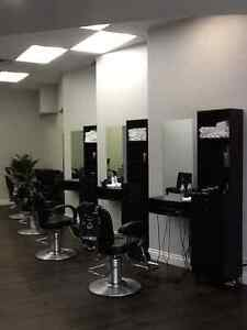 Hair Salon + Barber Shop Service In Cambridge Cambridge Kitchener Area image 6