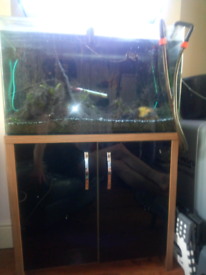 Fish tank tropical and all equipment
