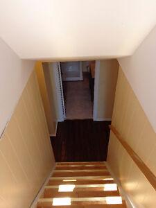 Sherwood park basement for rent