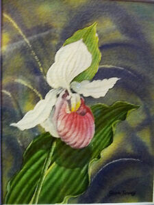 "Original Watercolor by Joan Tovey ""Lady's Slipper"" 1980's Stratford Kitchener Area image 3"