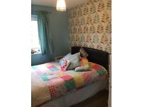 1 bed gff Southend on sea council exchange need 1/2 bed