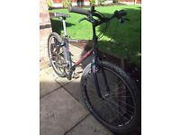 adults muddyfox pathfinder cromo mountain bike