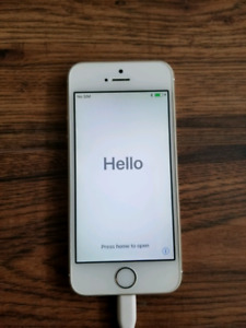 iPhone 5s unlocked great conditions