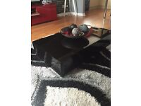 Designer High Gloss, Black , Low style, feature table