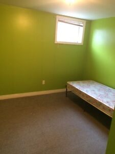 3 bed rooms basement for rent
