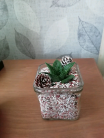 Mini succulent pot