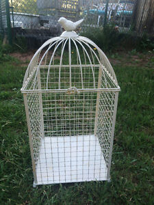 Vintage Bird Cage used for rustic wedding cardbox