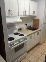Renovated large 3 1/2 beside metro longueuil