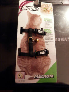 New cat harness w/leash and bell
