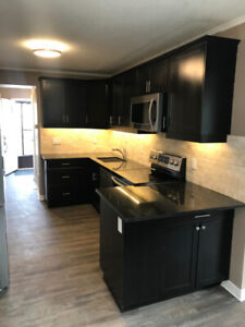 Renovated 3+1 Bedroom Townhouse with pool near LHSC