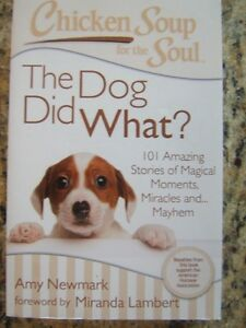 6 Chicken Soup For The Soul Books Peterborough Peterborough Area image 4
