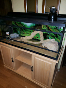 4 foot reptile terrarium with cabinet and accessories