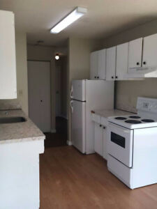 Pet Friendly, Spacious 1 bedroom -Madison Apartments