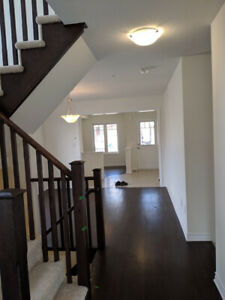 Brand new home for rent Cambridge $2150