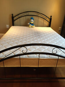 5 Month old Metal Grill Twin Bed with Mattress