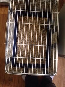 Rabbit cage with big bag of food and water bottle