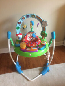 Fisher Price Baby bouncer from pet and smoke free home.