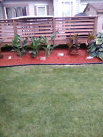 Landscaping services and snow removal
