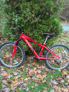 2011 Specialized Hotrock Mountain Bike 8 to 11 years
