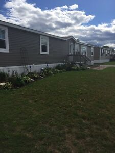 MiniHome with fenced in yard - Cross Creek Riverview