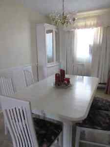 9 Piece Dining Room Set - Excellent Condition