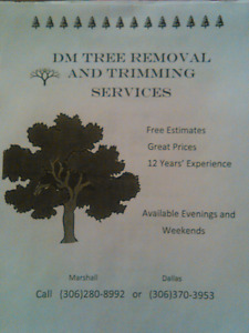 DM Tree removal  - GREAT PRICES