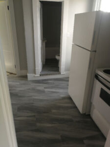 1 bedrom fully renovated  suite in 4 Plex for rent