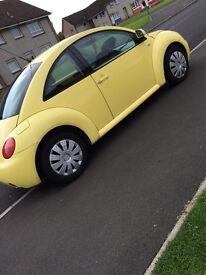 Yellow beetle looking for swap