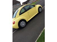 Yellow beetle looking for swap