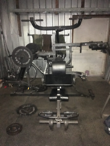 Powertec Multi-System with Olympic Plates
