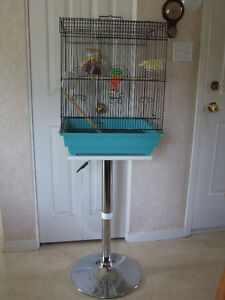 The bird cage with stand