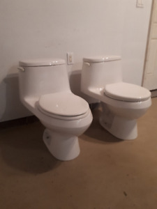 Two clean and functional toilets