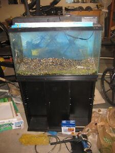 Fish Tank; 60 Gallon