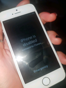 Help unlocking disabled iphone