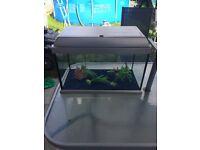 ELITE 35 FISH TANK COMPLETE SET UP , 2 PUMPS/ FILTERS FLUVAL U1