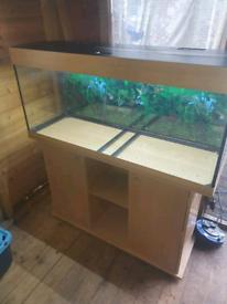 Fish tanks aquariums