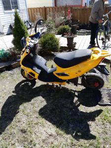 Daytona Ebike 500w