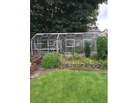 Extra Large 19.5 ft Greenhouse