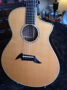 Breedlove pro Acoustic Electric (Reduced) again