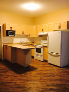 Spacious Bachelor Unit available in Downtown Strathroy!