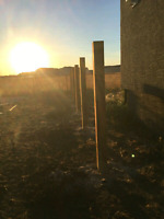 Quality Experienced Fence Post Experts