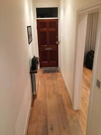 Huge modern house in Fulham Broadway double room