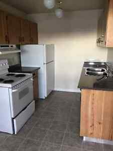One bedroom in Elevator  building Jan free,Feb & March half free