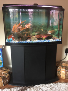 National Geographic 46 Gallon Aqua Oasis Aquarium for Sale