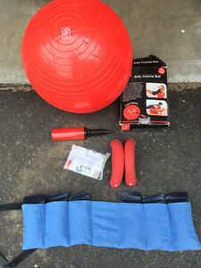 Exercise ball and weights
