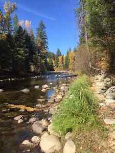 1.28 Acreage on the Kettle River! Septic & Well installed!