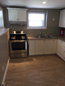 FULLY RENOVATED, 1 BEDROOM LOWER LEVEL DUPLEX - ALL INCLUSIVE