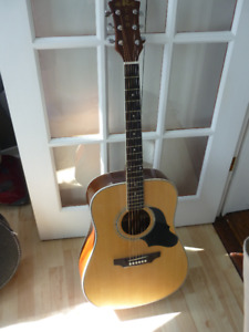 Acoustic Guitar with Semi-Hard Case