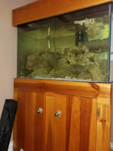 65 gal fish tank forsale
