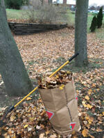 Leaf Clean-up / Fall Landscaping
